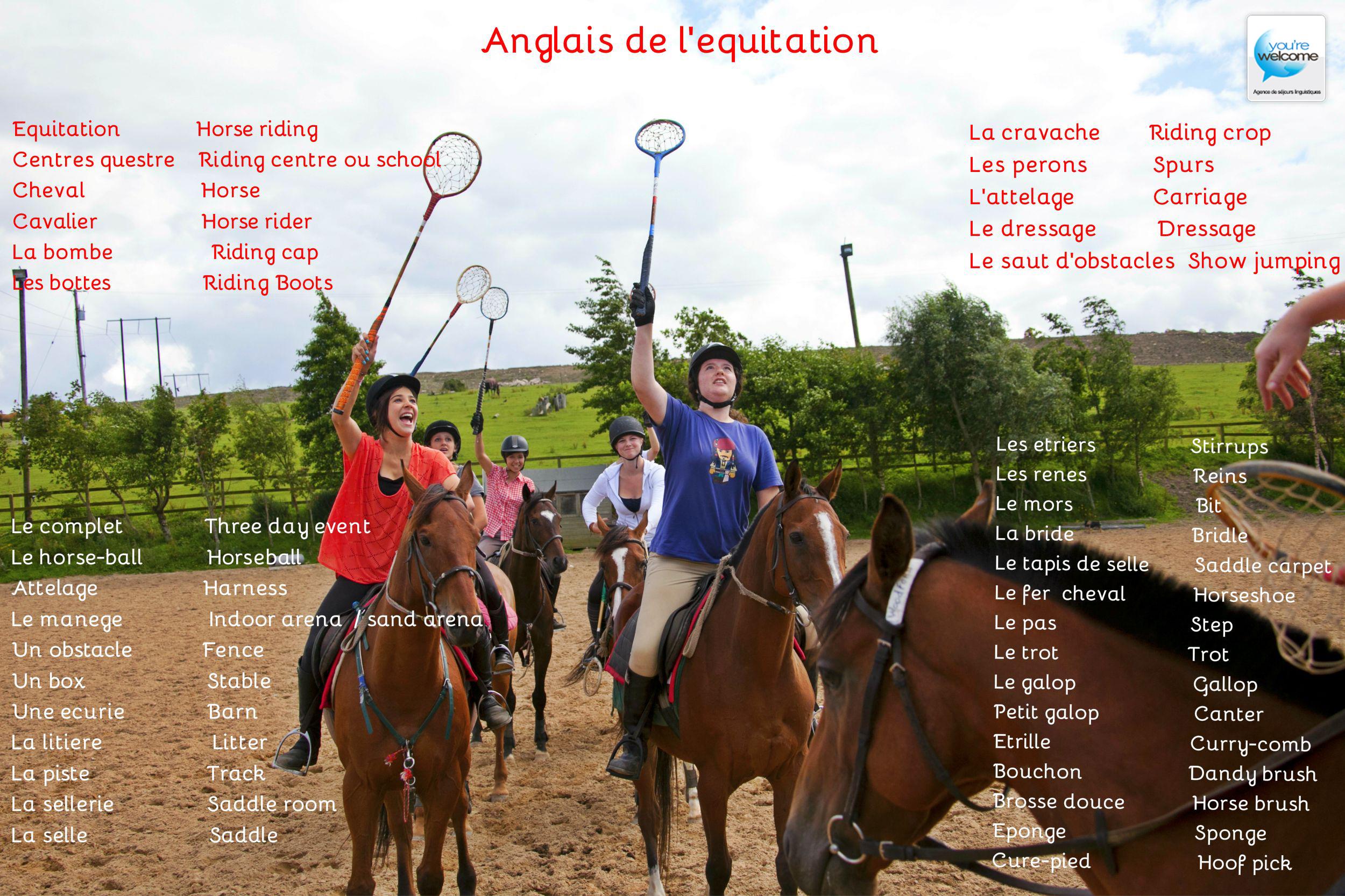 Anglais de l'équitation (2)