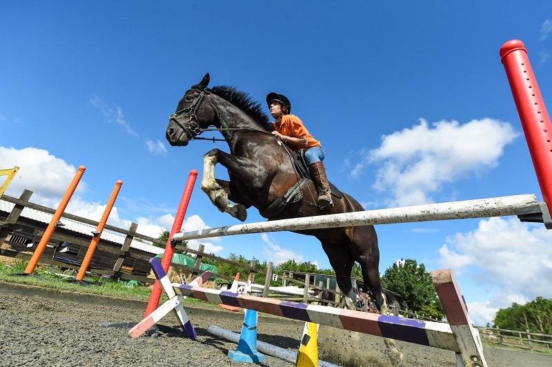 Lexique équitation Français Anglais